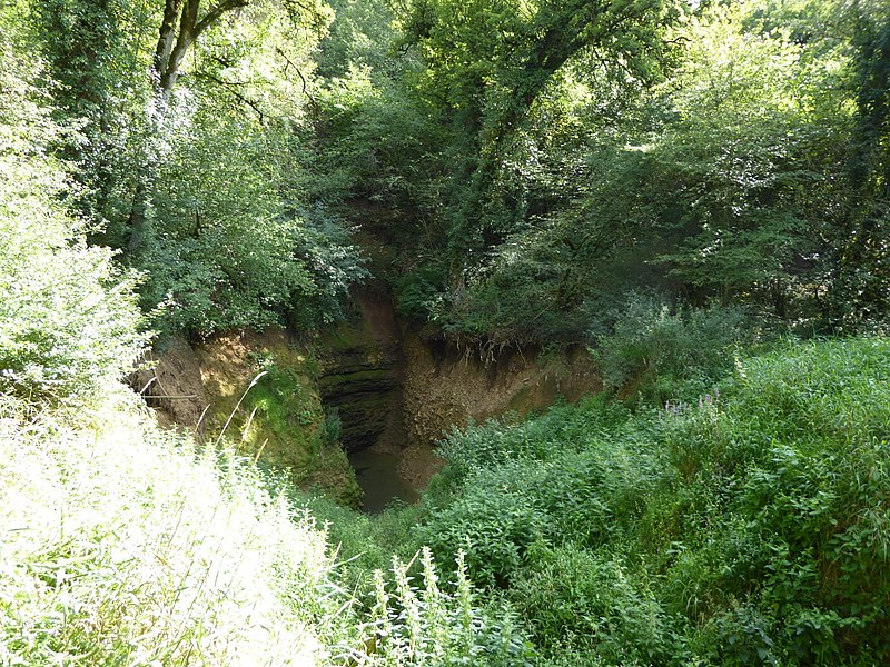 La deuille de Crézilles,  une perte-résurgence (inversac) de la rivière Aroffe, située sur le territoire de la commune de Crézilles en Meurthe-et-Moselle (France) presque à sec en été.