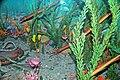 Diorama of a Cincinnatian seafloor (Late Ordovician) - nautiloids, crinoids, algae 1 (45566242802).jpg