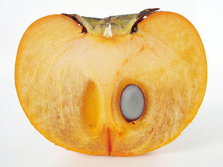 Beautiful Un Fruit En V Pictures - Joshkrajcik.us - joshkrajcik.us