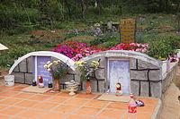 Image result for đồi thông hai mộ