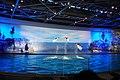 Dolphin show 0664.jpg