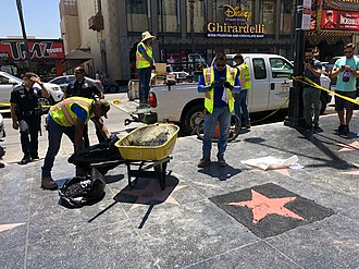 Trump's star under repair, soon after it was vandalized on July 25, 2018. Donald Trump's Hollywood Walk of Fame Star being repaired.jpg