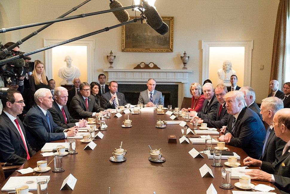 Donald Trump Cabinet meeting 2017-03-13 04