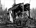 Donkey engine and loading crew, camp 5, Independence Logging Company, ca 1924 (KINSEY 1953).jpg