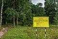 Dubrava Ščomyslickaja natural monument (Belarus) p15.jpg