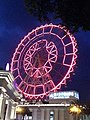 EDOM ferris wheel 20140831 night.jpg