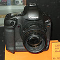 EOS 1Ds Mark III img 0825.jpg