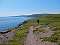 East Coast Trail (43315018154).jpg