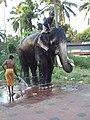 East Nada, Guruvayur, Kerala, India - panoramio (7).jpg