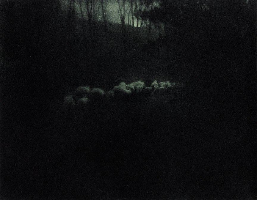Edward Steichen-Pastoral