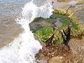 El mar golpeando una roca.jpg