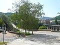 Els dos ponts de Sant Joan de les Abadesses P1460362.jpg