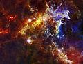 Embryonic Stars in the Rosette Nebula.jpg