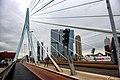 Erasmusbrug Мост Эра́зма - panoramio.jpg
