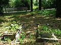 Evang. Cemetery in Niwka (Puszczykowo) (6).jpg