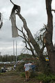 FEMA - 28006 - Photograph by Mark Wolfe taken on 02-03-2007 in Florida.jpg