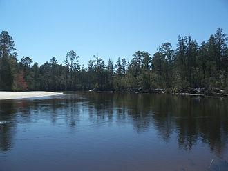 Blackwater River (Florida) - Blackwater River in Blackwater River State Park