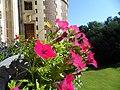 Façade Est Château de Villersexel - panoramio.jpg