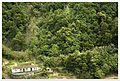 Faial da Terra - panoramio (61).jpg