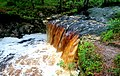 Falling Creek Falls - June 2017.jpg