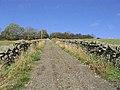 Farm track - geograph.org.uk - 597530.jpg