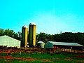 Farm with two Silos - panoramio.jpg