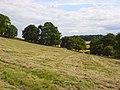 Farmland, Saunderton - geograph.org.uk - 892808.jpg