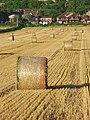Farmland, Saunderton - geograph.org.uk - 957334.jpg