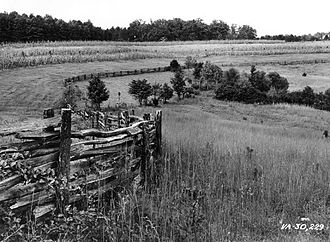 Split-rail fence - Log fence with double posts (photo taken in 1938).