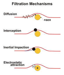 Four diagram each showing the path of small particle as it approaches a large fiber according to each of the four mechanisms