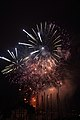 Fireworks - July 4, 2010 (4773768830).jpg