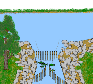 Fishing weir - Weir-type fish trap.