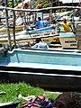 Fishing Boat Array - Fort District - Galle - Sri Lanka (14044094102).jpg