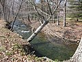 Fishing Creek Running Clear - panoramio.jpg