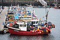 Fishing boats in Newlyn Harbour - geograph.org.uk - 1109544.jpg