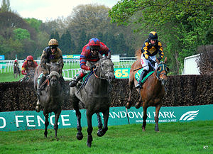Tidal Bay - Tidal Bay (left with noseband) racing in the Bet365 Gold Cup at Sandown Park in April 2012