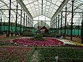 Floral Boat model from Lalbagh flower show Aug 2013 7866.JPG