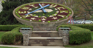 "A large clock whose face, made from flowers, bears the outline of the state of Kentucky and the word ""Kentucky"""