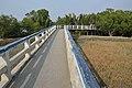 Footbridge - Sundarban Biodiversity and Interpretation Area - Taki - North 24 Parganas 2015-01-13 4654.JPG