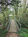 Footbridge in the copse - geograph.org.uk - 156022.jpg