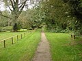 Footpath, Clare Country Park - geograph.org.uk - 980704.jpg