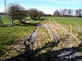 Footpath above Morwick Banks - geograph.org.uk - 1805476.jpg