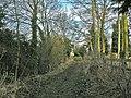 Footpath at Holdingham - geograph.org.uk - 1136051.jpg