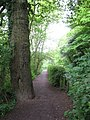 Footpath at the South end of Coate Water - geograph.org.uk - 806811.jpg