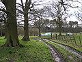 Footpath junction, Wroxall Abbey park - geograph.org.uk - 1775521.jpg
