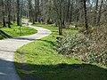 For your strolling or biking pleasure - Flickr - DavidK-Oregon.jpg