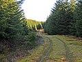 Forestry track in upper Glen Boltachan - geograph.org.uk - 706499.jpg