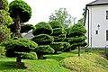 Formklippta barrträd vid Hildasholm.jpg