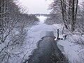 Forsåns utlopp i Drevviken, vinter.jpg