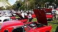 Fort Myers, FL, USA - panoramio (50).jpg